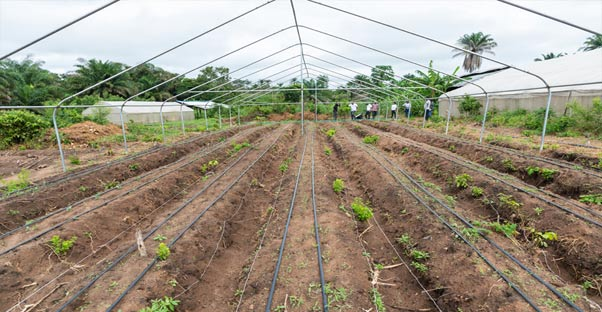 Agro4You Irrigation