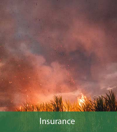 Agro4you Insurance