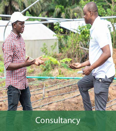 Agro4you Consultancy
