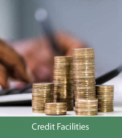 Agro4you Credit Facilities
